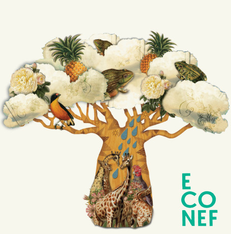 ETTELVA/MER stödjer Econef